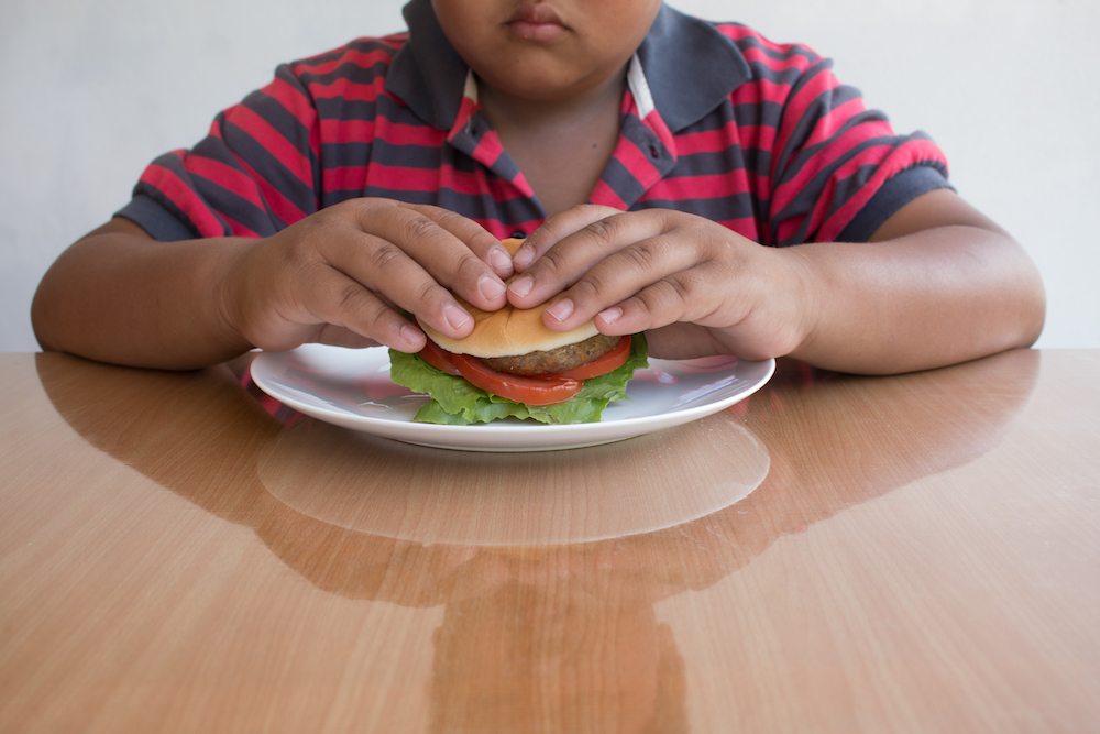 Paternal obesity linked to delayed child development