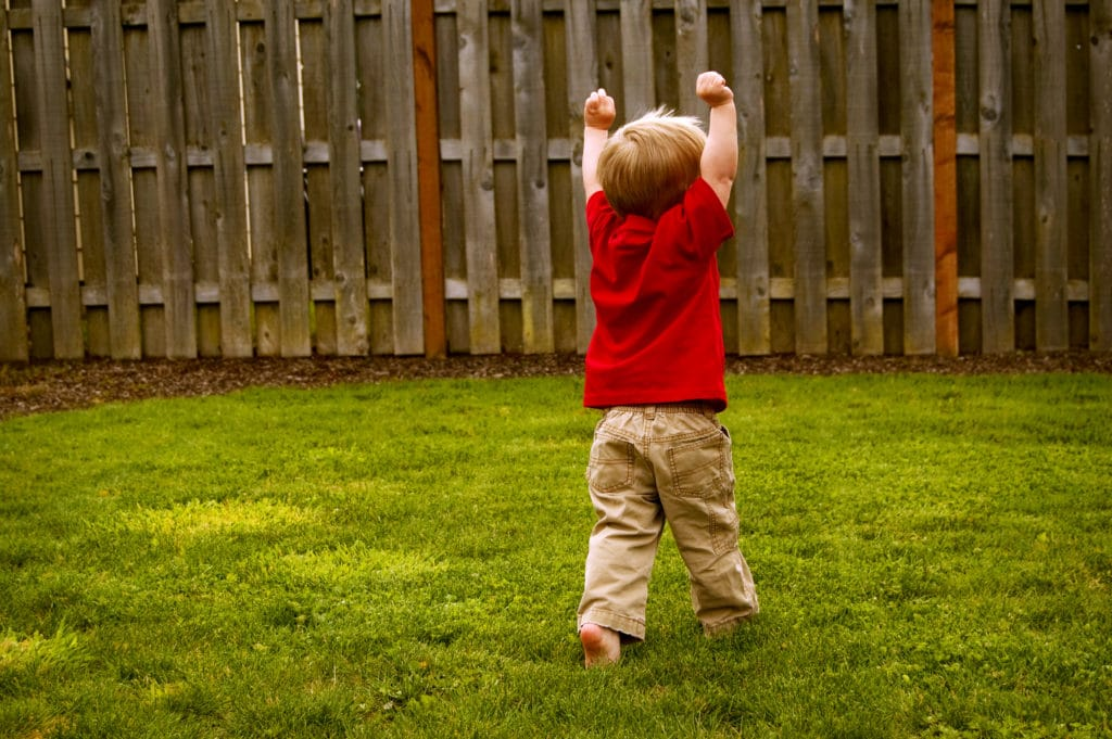 praise toddler cognitive